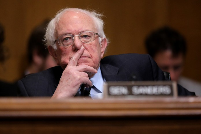 picture of Sanders